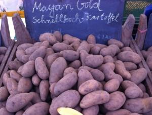 Mayan Gold Schnellkochkartoffel
