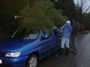 Weihnachtsbaumtransport - gut festzurren!