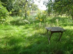 Kleiner Teaktisch im Wildgarten