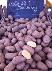 Alte Kartoffelsorte Belle de Fontenay